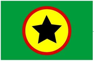 Congo : Ligue Panafricaine - Umoja : enfin, une voix panafricaniste dans Afrique drapeau_lp_umoja_def_d-300x195
